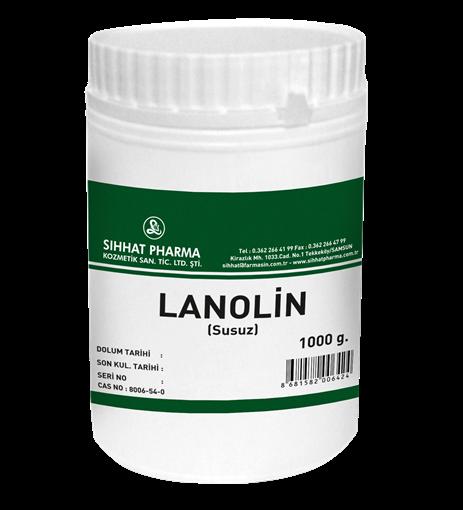 LANOLIN SUSUZ 1000 GR (SIHHAT) resmi